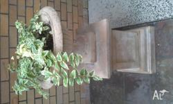2 hanging plants in concrete sandstone finish on plinth