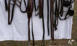 Pony harness. English leather, tan with brass fittings.