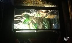 Reptile one snake enclosure with light fitting for