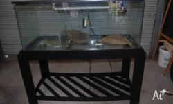 Reptile Vivarium for sale, freshly painted stand with