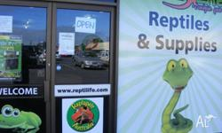 Repti-Life Unique Pets is your One Stop Reptile Shop in
