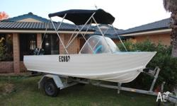 Alluminium River Boat with 40hp Mercury blue band,