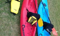 Pair of SEAK Swift Kayak's bought from Anaconda. Paid