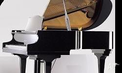 The baby grand piano is Samick Sg172 Great for décor.