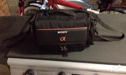 Sony Camera Carry case great condition apart from small