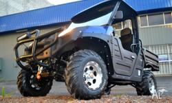 "SYNERGY OFF-ROAD VEHICLES ""SYNERGY DESERT STORM 600"
