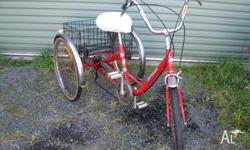 Apolo 3 wheel tricycle with 5 speed chain gears, front