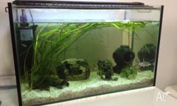 Hi all. Im selling my fish tank as in the photos. Im