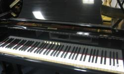 Yamaha G5 Grand Piano 200cm 6ft 6in Large Grand Piano.